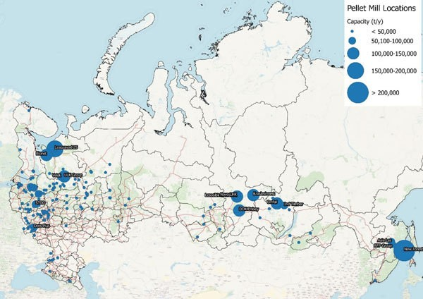 深入分析:俄罗斯的全球木颗粒供应展望